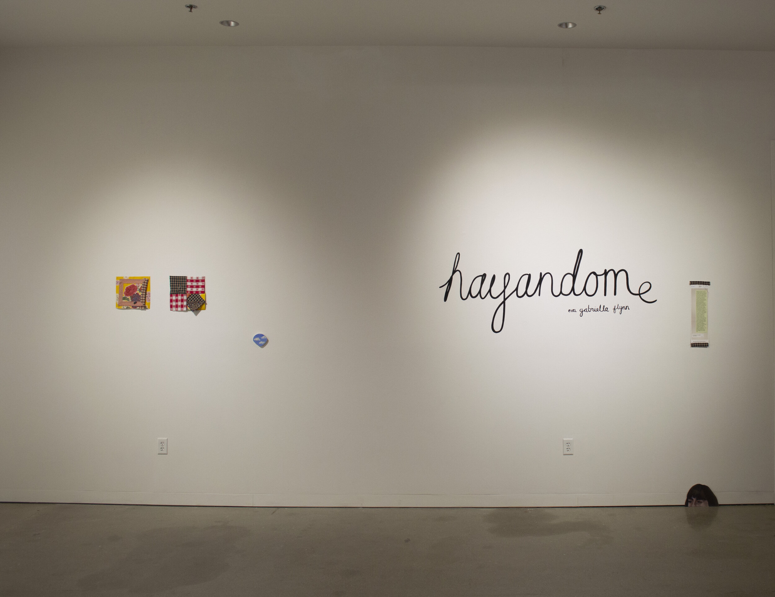 Installation view of hayadome exhibition by Eva Gabriella Flynn